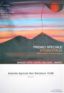 premio-speciale-vitignoitalia-san-salvatore